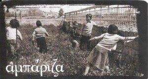 ampariza1
